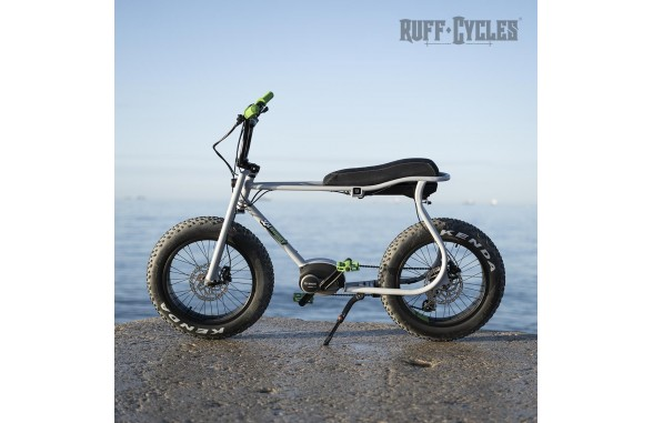 LIL'BUDDY eBikes Bosch Active Line Plus / Gray_Green